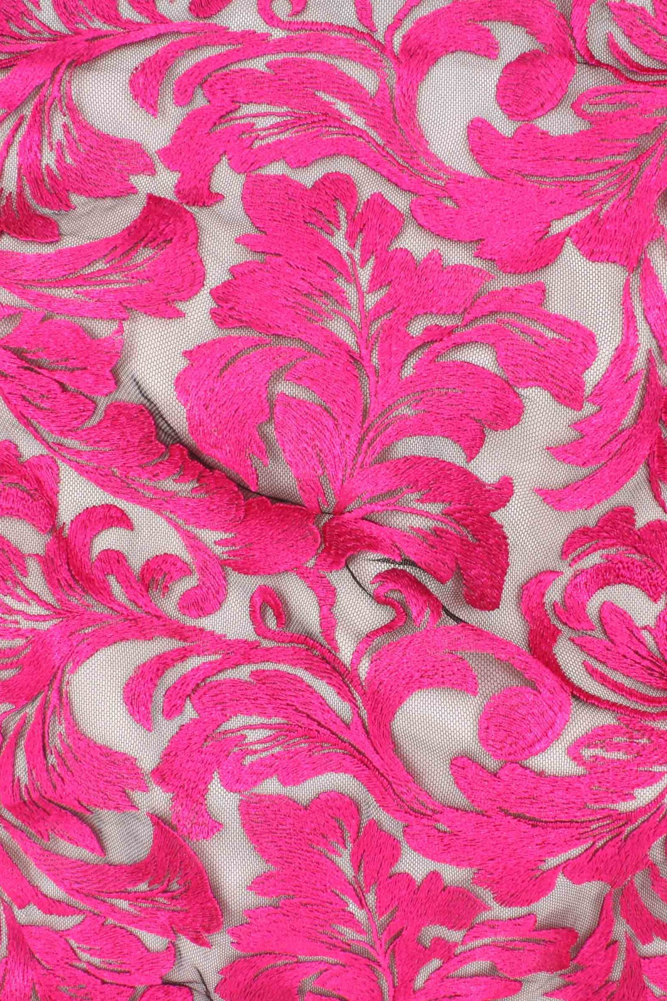 Damask Lace Black / Fuchsia