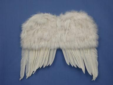 "Feather Wings 90cm (36"") White"