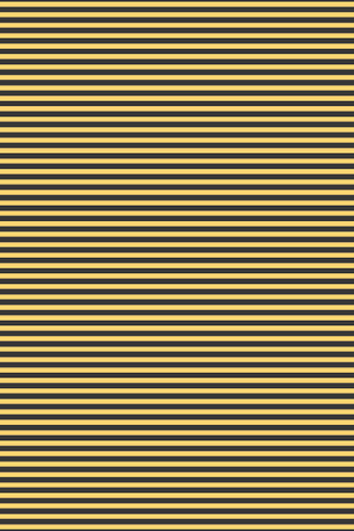 Devonstone Queen Bee Stripe Black / Yellow