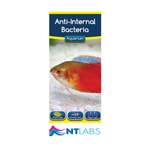 NT Labs - Anti-internal Bacteria 100ml