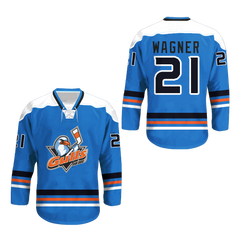 San Diego Gulls Hockey Jersey Any Player or Number New Stitch Sewn New All Size
