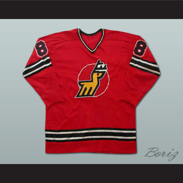Danny Gruen Michigan Stags Hockey Jersey New Any Size Any Player or Number - borizcustom