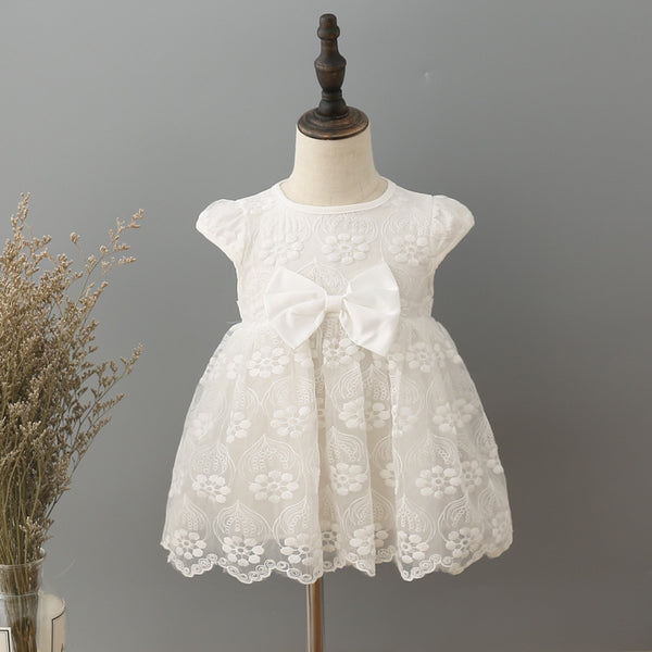 7591de20cad9 newborn baby girls dress lace embroidery baby wedding party ball gown