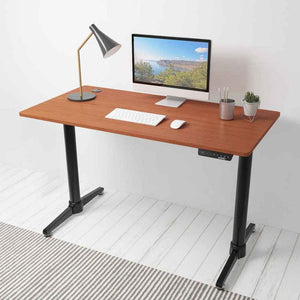 "Eureka Ergonomic 48"" Wide Electric Adjustable Height Standing Desk-Electric Standing Desks-Eureka Ergonomic-Cherry-Ergo Standing Desks"