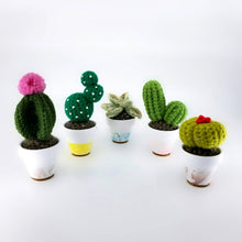 Load image into Gallery viewer, Cacti (S) - 03