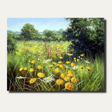 Load image into Gallery viewer, Daisy Field