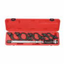 9pc Head-interchageable torque wrench & single-hook spanner set