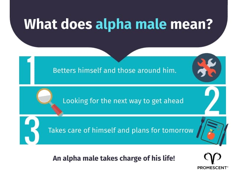 What it means to be an alpha male