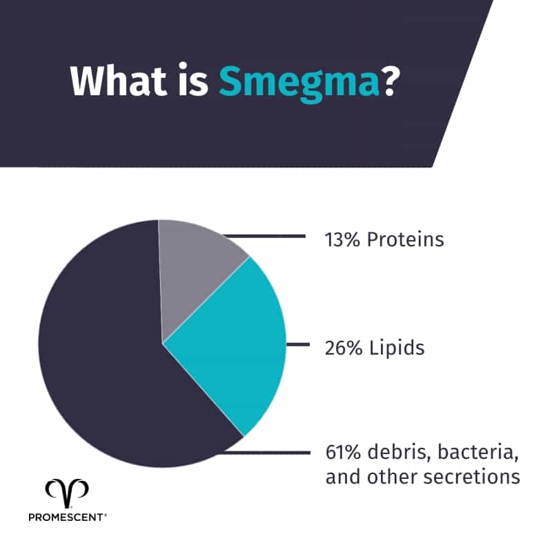 Chart showing the percentages of what smegma is comprised of
