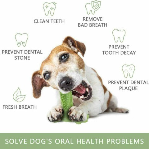 Dog Toothbrush Teeth Cleaning Chew Toy Small/Large