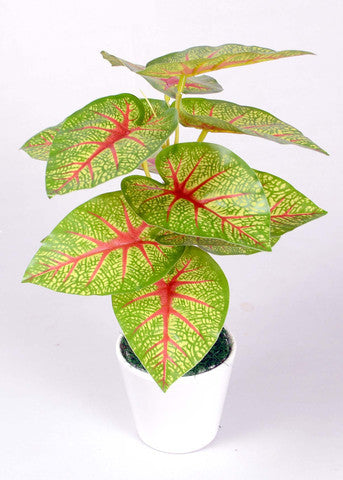 Artificial Plants from Ginnibloom
