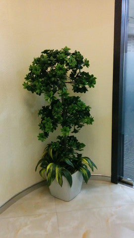 16. Artificial plant arranged at a corporate office in Mumbai