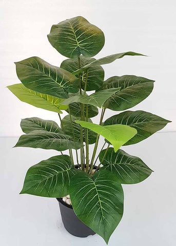 Artificial Philodendron Plant - 18 Leaves