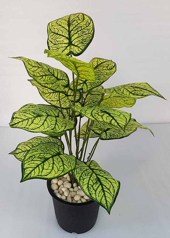 Artificial Yellow Shaded Leaf Plant - 18 Leaves