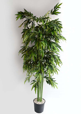 ARTIFICIAL BAMBOO PLANT - 7.5 FT (1 SET OF 6 PLANTS)