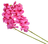 Artificial Vanda Orchids - Pink-2 stems