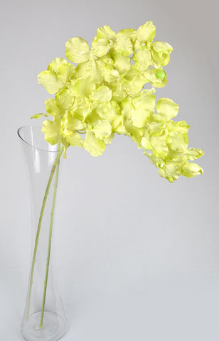 Artificial Vanda Orchids - Green-2 stems