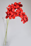Artificial Vanda Orchids - Red-2 stems