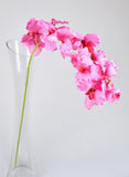 Artificial Vanda Orchids - Pink-1 stems
