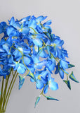 DROOPY BLUE ORCHID/ DENDROBIUM ORCHIDS (WHOLESALE PACK OF 24 STEMS)
