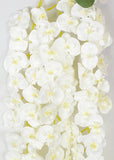 ARTIFICIAL HANGING BUTTERFLY ORCHID X 3 - WHITE (WHOLESALE PACK OF 6)