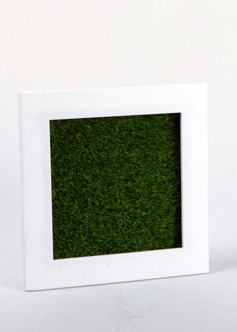 Artficial Moss Wall Frame - 15 x 15 cm (WHOLESALE PACK OF 10 PC)