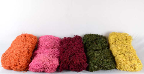 COLOURED CURLY MOSS - MIX COLOURS (WHOLESALE PACK OF 20 PKTS @ 250/- EACH)