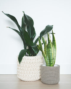 Large eco plant pot - natural