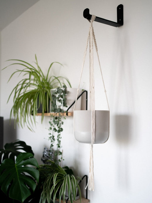 Macrame plant hanger natural cream recycled cotton - Knttd
