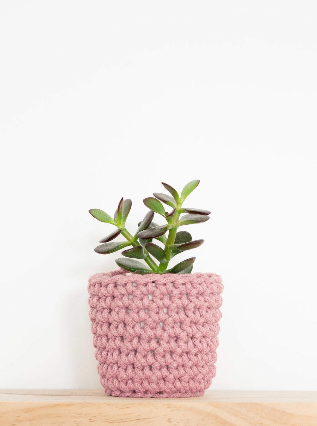 Mini eco plant pot - blush - Knttd coloured handmade plant pot cover made from recycled cotton yarn with watertight inner pot made from recycled plastic