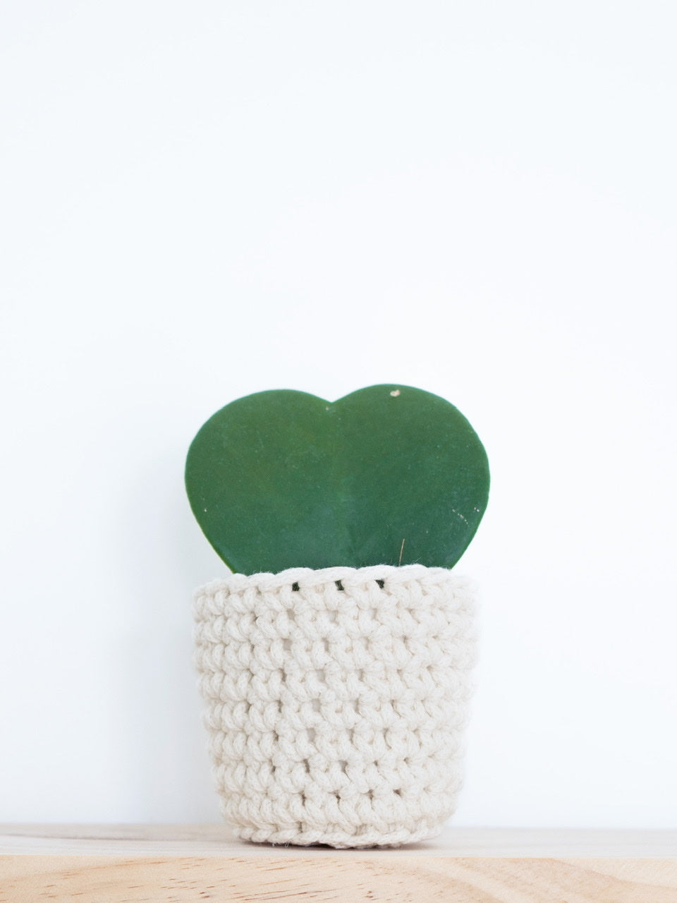 Mini eco plant pot - natural - Knttd coloured handmade plant pot cover made from recycled cotton yarn with watertight inner pot made from recycled plastic