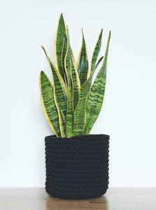 Medium eco plant pot - black - Knttd