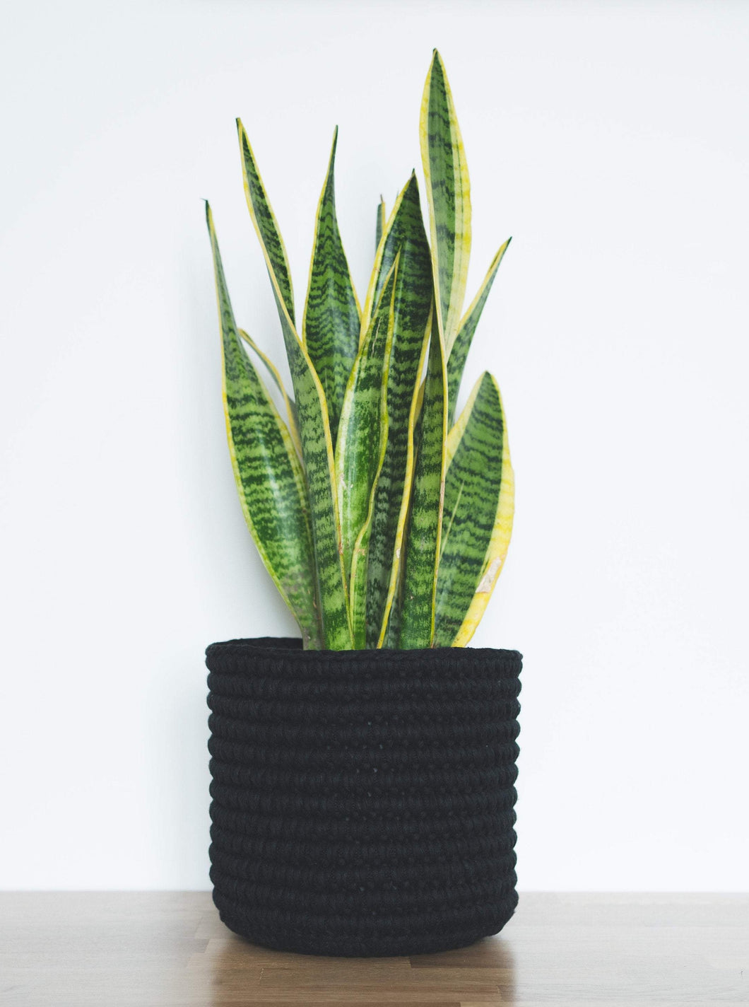 Medium eco plant pot - black - Knttd coloured handmade plant pot cover made from recycled cotton yarn with watertight inner pot made from recycled plastic