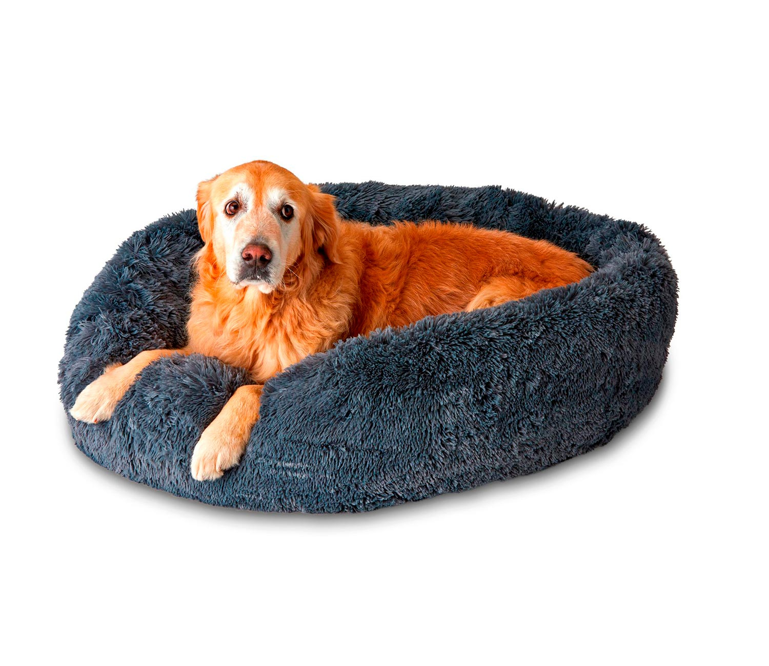 Picture of: Pet Calming Bed Pupnaps Canada S Favourite Dog Bed
