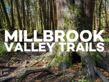 Millbrook Valley Trails