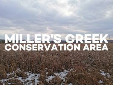 Miller's Creek Conservation Area