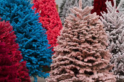 The Magic of Flocked Trees