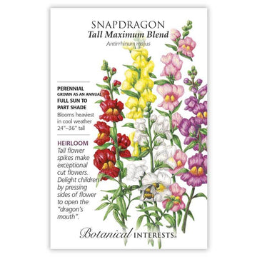 Snapdragon 'Tall Maximum Blend'