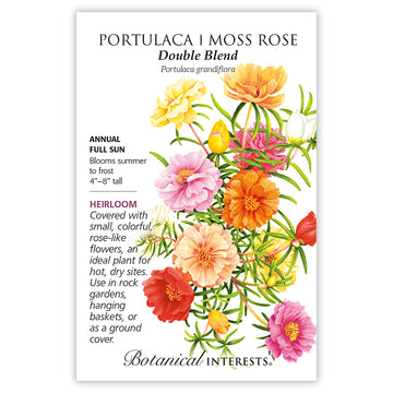 Portulaca / Moss Rose 'Double Blend'