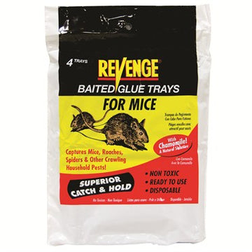 Bonide Revenge Glue Trap For Mice