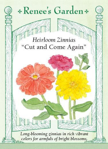 Zinnias 'Cut and Come Again'