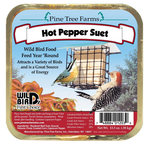 Suet - Hot Pepper Cake