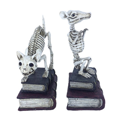 Animal Skeleton and Books: Resin, 2 assorted styles