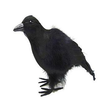 Crow Decoration with Feather: 4.72 x 6.69 inches
