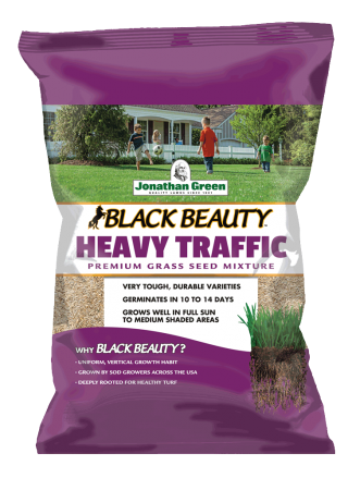 Black Beauty Heavy Traffic Grass Seed