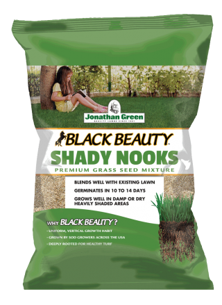 Black Beauty Shady Nooks Grass Seed