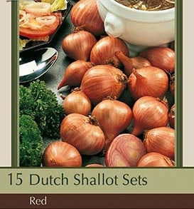 Dutch Shallot Sets 'Red'