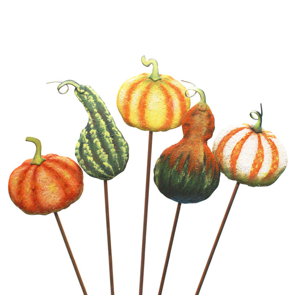 Picks: Small Fall Impression Gourds