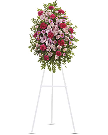 Teleflora Pink Tribute Spray