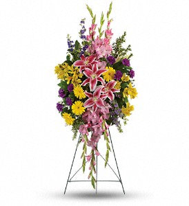 Teleflora Rainbow Of Remembrance Spray
